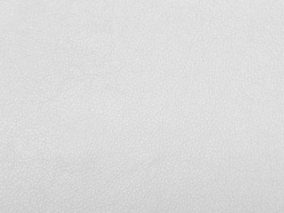 01 white 1 400x300 - Lederfarben