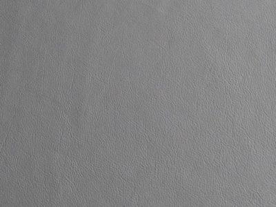 04 ash 400x300 - Lederfarben
