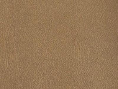 10b camel 400x300 - Lederfarben