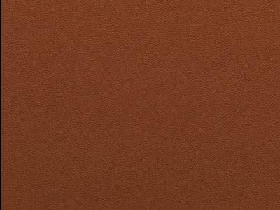 16 tan 400x300 - Lederfarben