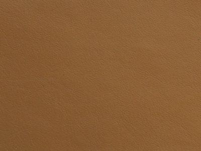 21 mustard 400x300 - Lederfarben
