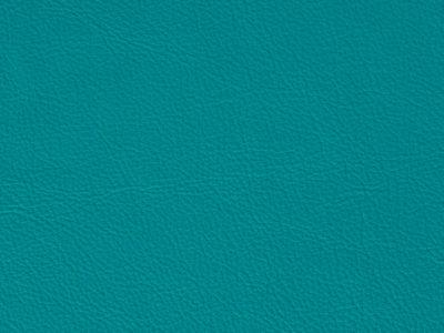 38 ocean 400x300 - Lederfarben