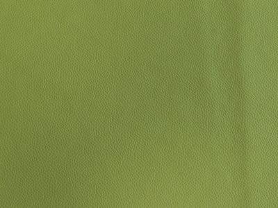 44 lightgreen 400x300 - Lederfarben