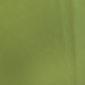 44 lightgreen 85x85 - Lederfarben