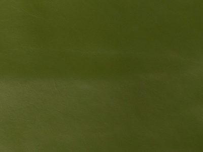 45 green 400x300 - Lederfarben