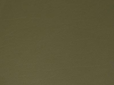 46 khaki 400x300 - Lederfarben