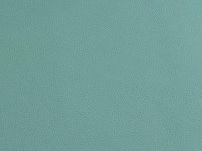 57 aqua 400x300 - Lederfarben